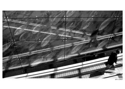 2007_05_18_Shopping