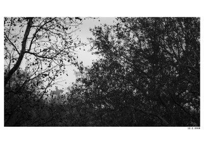 2008_02_12_Jezdec