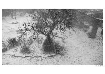 2008_11_22_Zimni