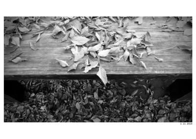 2010_11_01_Listopad
