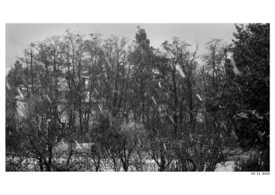 2010_11_23_Prvni