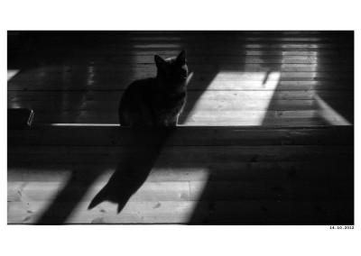 2012_10_14_Kocour